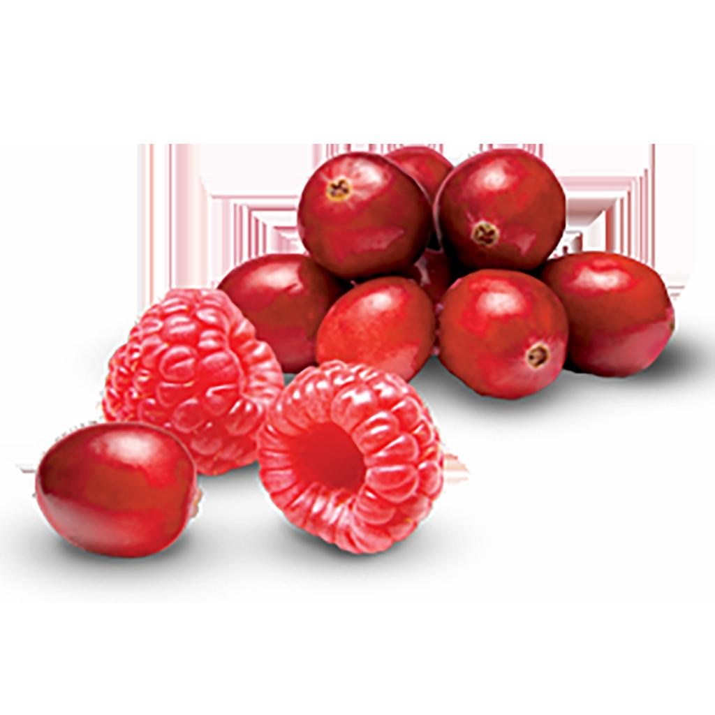 yogurtland find your flavor cranberry raspberry tart