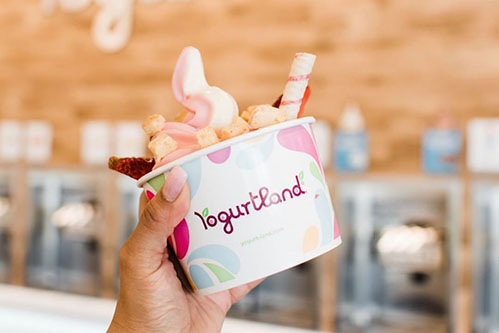 Yogurt in front of Yogurtland Store Logo