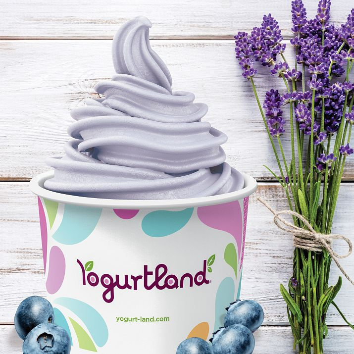 Flavor Spotlight: Blueberry Lavender Light Ice Cream